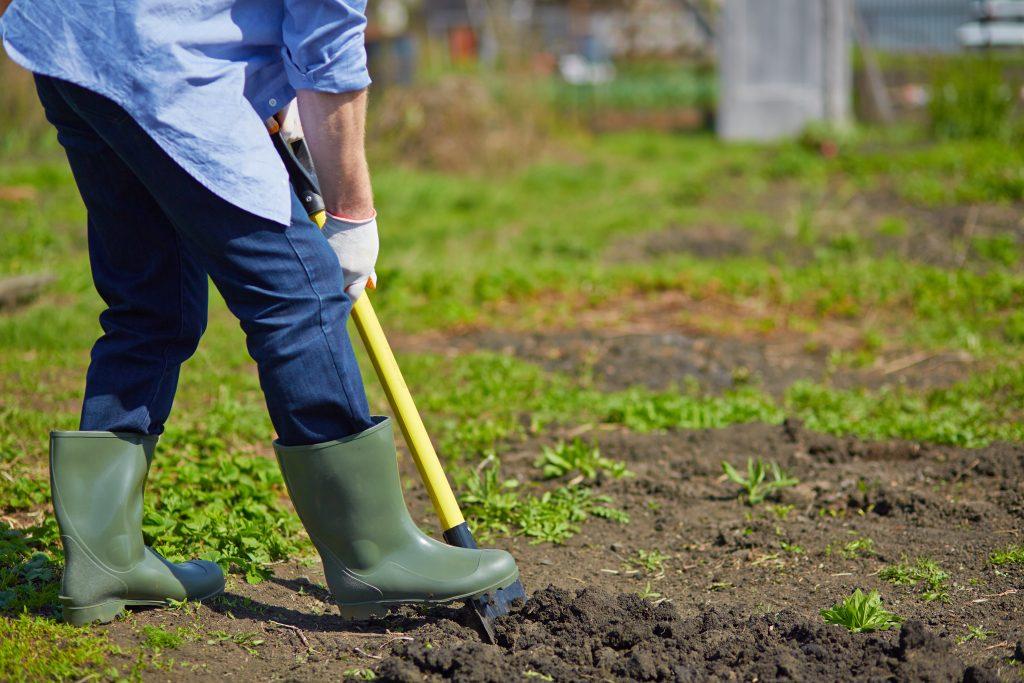 professional gardeners in Adelaide